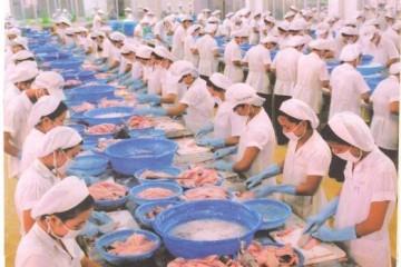 Traum tuyển lao dụng lao động đơn hàng thủy sản tỉnh Chiba