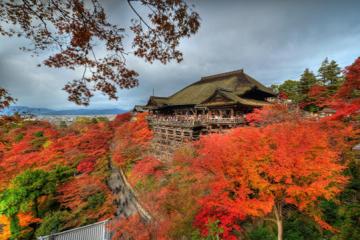 Điểm mặt những địa điểm du lịch đáng đi nhất Nhật Bản