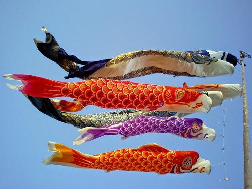 cờ cá chép