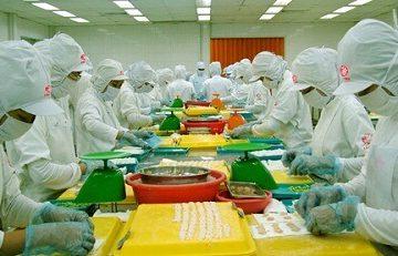Tuyển 08 lao động làm chế biến thực phẩm tại Fukui pv 27/05