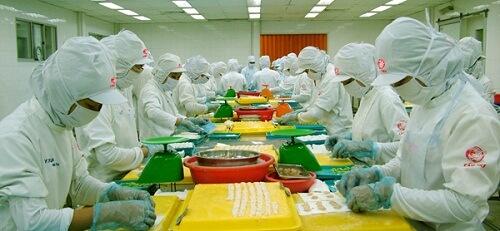 tuyển 08 lao động làm chế biến thực phẩm tại Fukui Nhật Bản