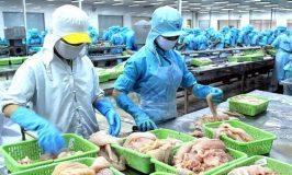 Tuyển 6 nữ làm chế biến thủy sản tại Aomori Nhật Bản pv 14/07