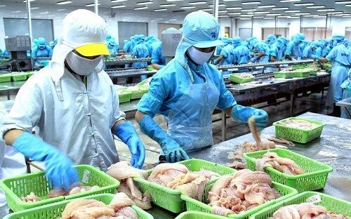 tuyển 6 nữ làm chế biến thủy sản tại Aomori Nhật Bản phỏng vấn ngày 14/07/2016