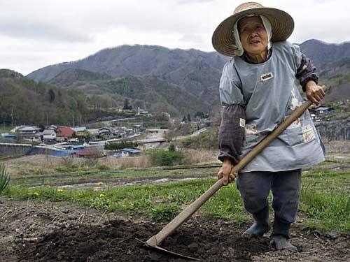 Dù thích hay không Nhật Bản vẫn phải nhận TTS Việt Nam
