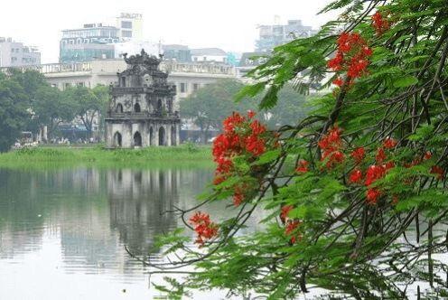 Danh sách các trung tâm tư vấn du học tại Hà Nội đã được cấp phép