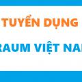 Traum Việt Nam tuyển nhân viên khai thác thị trường lao động