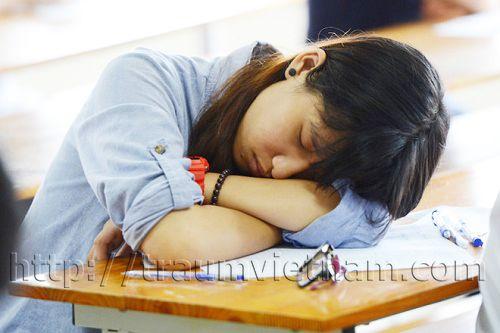 Du học Nhật Bản nhiều giấc mơ tan vỡ