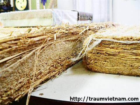 Chiếu Tatami linh hồn của ngôi nhà Nhật