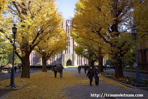 Du học cao học tại Nhật - Đại học Tokyo