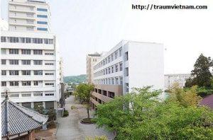 Du học cao học tại Nhật - Đại học công nghệ Fukui