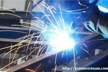Tuyển 6 nam phỏng vấn đơn hàng làm sắt làm việc tại Niigata Nhật Bản (1/2018)