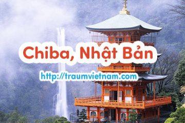 Danh sách những trường Nhật ngữ ở Chiba Nhật Bản