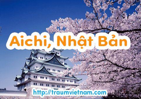 Danh sách những trường Nhật ngữ ở Aichi Nhật Bản 2018