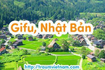 Danh sách những trường Nhật ngữ ở Gifu Nhật Bản 2018
