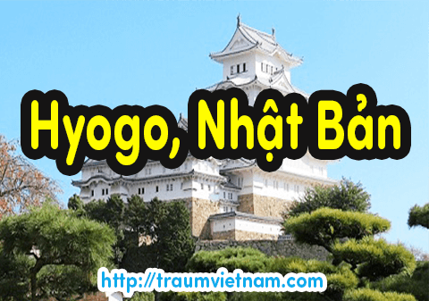 Danh sách những trường Nhật ngữ ở Hyogo Nhật Bản