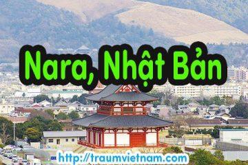Danh sách những trường Nhật ngữ ở Nara Nhật Bản