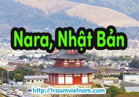 Danh sách những trường Nhật ngữ ở Nara Nhật Bản 2018