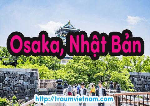 Danh sách những trường Nhật ngữ ở Osaka Nhật Bản