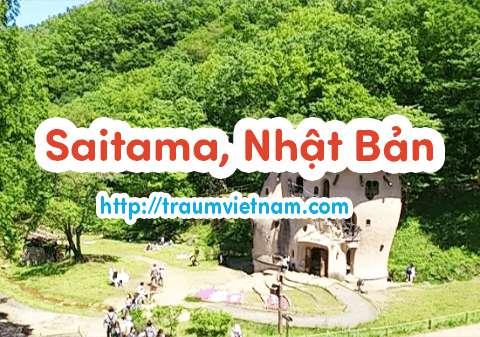 Danh sách những trường Nhật ngữ ở Saitama Nhật Bản