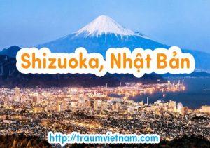Danh sách những trường Nhật ngữ ở Shizuoka Nhật Bản 2018