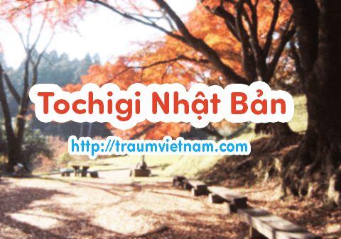 Danh sách những trường nhật ngữ ở Tochigi Nhật Bản