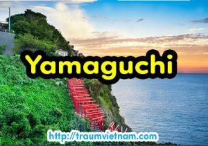 Danh sách những trường Nhật ngữ ở Yamaguchi Nhật Bản