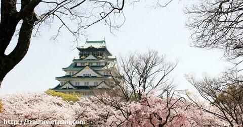 Tỉnh Aichi Nhật Bản - Trạm trung chuyển của nước Nhật