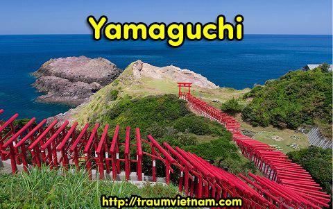 Tỉnh Yamaguchi Nhật Bản - hấp dẫn từ cái nhìn đầu tiên