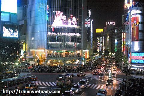 Tokyo rực rỡ về đêm