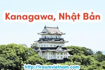 Danh sách những trường Nhật ngữ ở Kanagawa Nhật Bản 2018