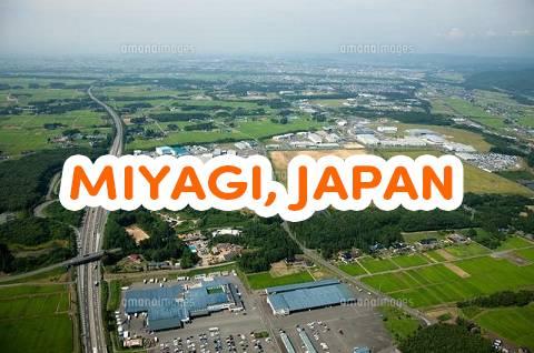 Danh sách những trường Nhật ngữ ở Miyagi Nhật Bản