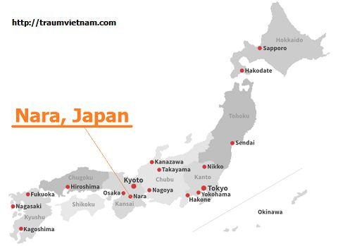 Vị trí địa lý của tỉnh Nara Japan