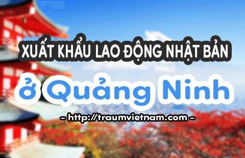 Đăng ký xuất khẩu lao động Nhật Bản ở Quảng Ninh - Phí rẻ