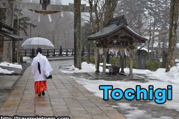 Tỉnh Tochigi Nhật Bản – miền đất du lịch xứ phù tang