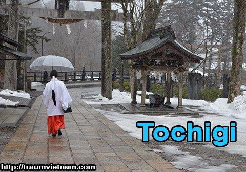 Tỉnh Tochigi Nhật Bản - miền đất du lịch xứ phù tang