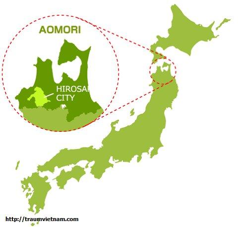 Vị trí địa lý của tỉnh Aomori Japan