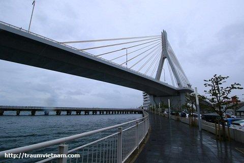 Cầu bộ hànhAomoriLoveridge