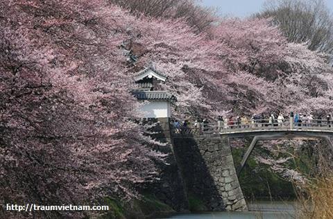 Công viên Kajo - tỉnh Yamagata Nhật Bản