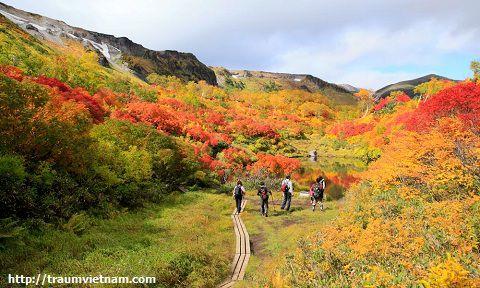 Công viên quốc gia Daisetsuzan
