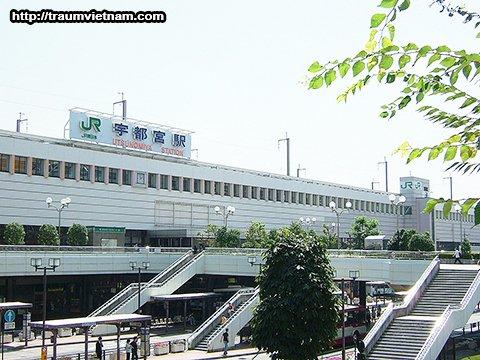 Đặc điểm kinh tế khu vực Tochigi Nhật Bản