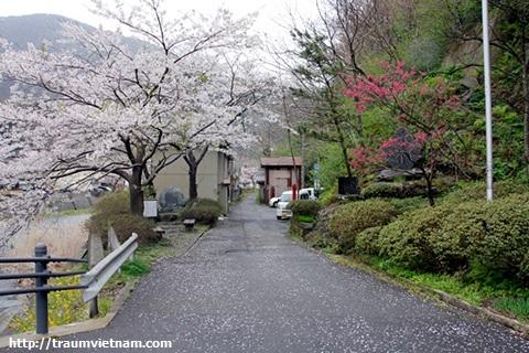 Đặc điểm kinh tế khu vực Yamagata Nhật Bản