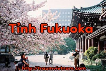 Tỉnh Fukuoka Nhật Bản – nơi yêu thích của du học sinh