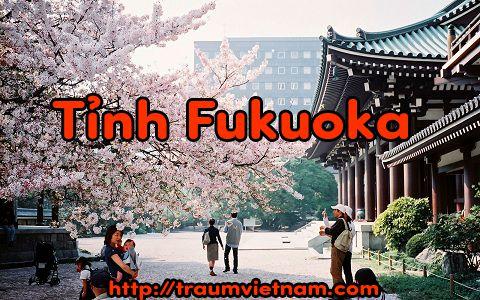 Tỉnh Fukuoka Nhật Bản - nơi yêu thích của du học sinh