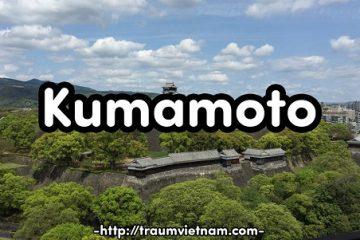 Tỉnh Kumamoto Nhật Bản – vùng đất của rừng, núi lửa và … gấu