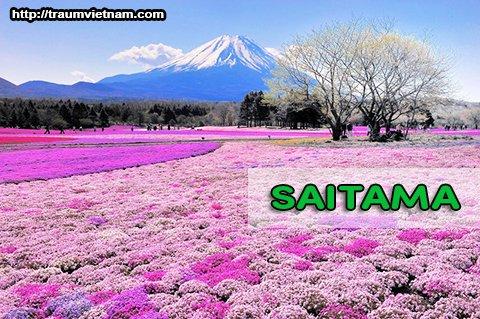 Tỉnh Saitama Nhật Bản - Nơi lưu dấu của những chuyến xe lửa