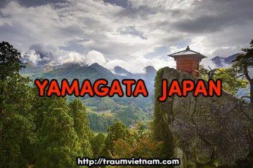Tỉnh Yamagata Nhật Bản – vùng đất của onsen và hoa anh đào