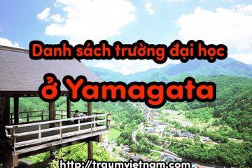 Danh sách các trường đại học ở Yamagata Nhật Bản