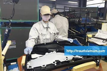 Tuyển 9 nam làm đúc nhựa ở Niigata Nhật Bản phỏng vấn 27/03