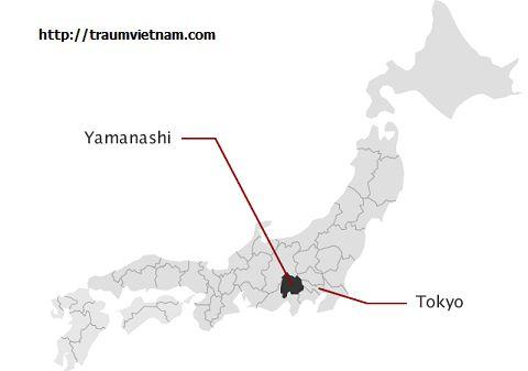 Vị trí địa lý của tỉnh Yamanashi Nhật Bản
