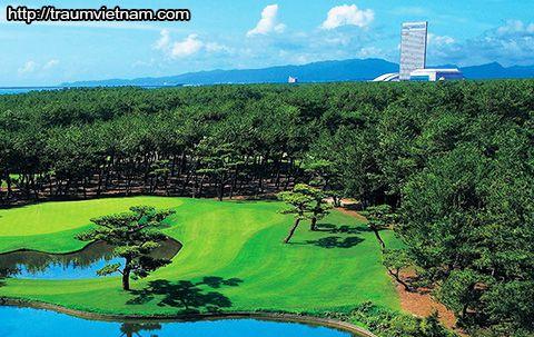 Sân golf ở Khu nghỉ mát Phoenix Seagaia